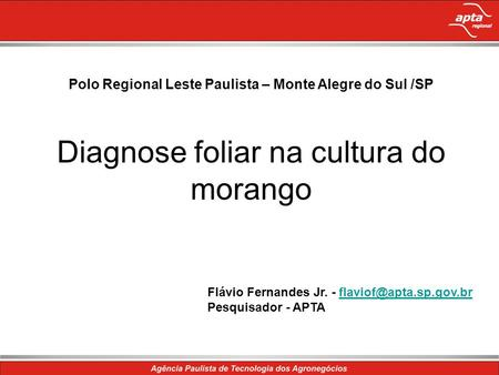 Polo Regional Leste Paulista – Monte Alegre do Sul /SP Diagnose foliar na cultura do morango Flávio Fernandes Jr. -