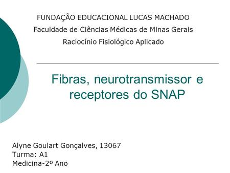 Fibras, neurotransmissor e receptores do SNAP
