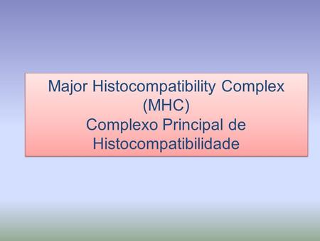 Major Histocompatibility Complex