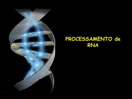 PROCESSAMENTO de RNA. Intron typeWhere found GU-AG intronsEukaryotic nuclear pre-mRNA AU-AC intronsEukaryotic nuclear pre-mRNA Group IEukaryotic.