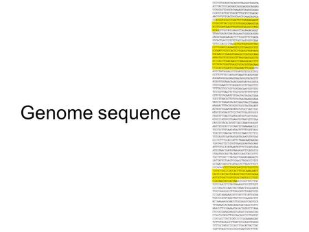 Genome sequence. Genome size does not correlate well with gene number or with apparent organism complexity Closely related organisms can have genome sizes.
