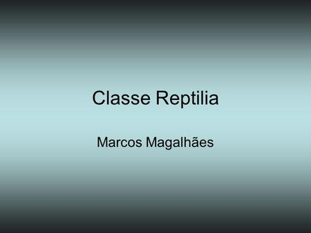 Classe Reptilia Marcos Magalhães.