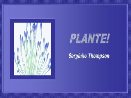 PLANTE! Serginho Thompson.