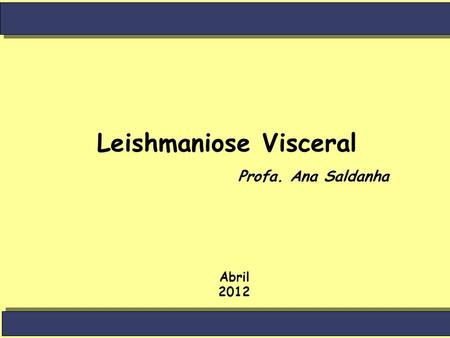 Leishmaniose Visceral Abril 2012 Profa. Ana Saldanha.
