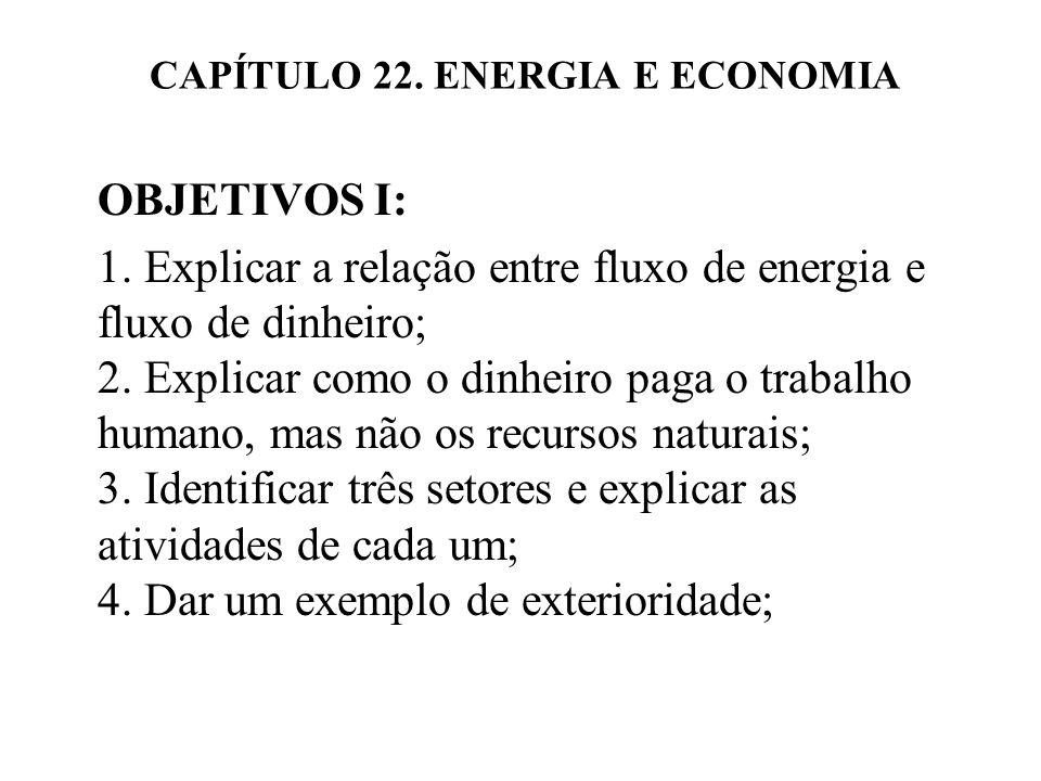 CAPÍTULO 22.ENERGIA E ECONOMIA OBJETIVOS II: 5.