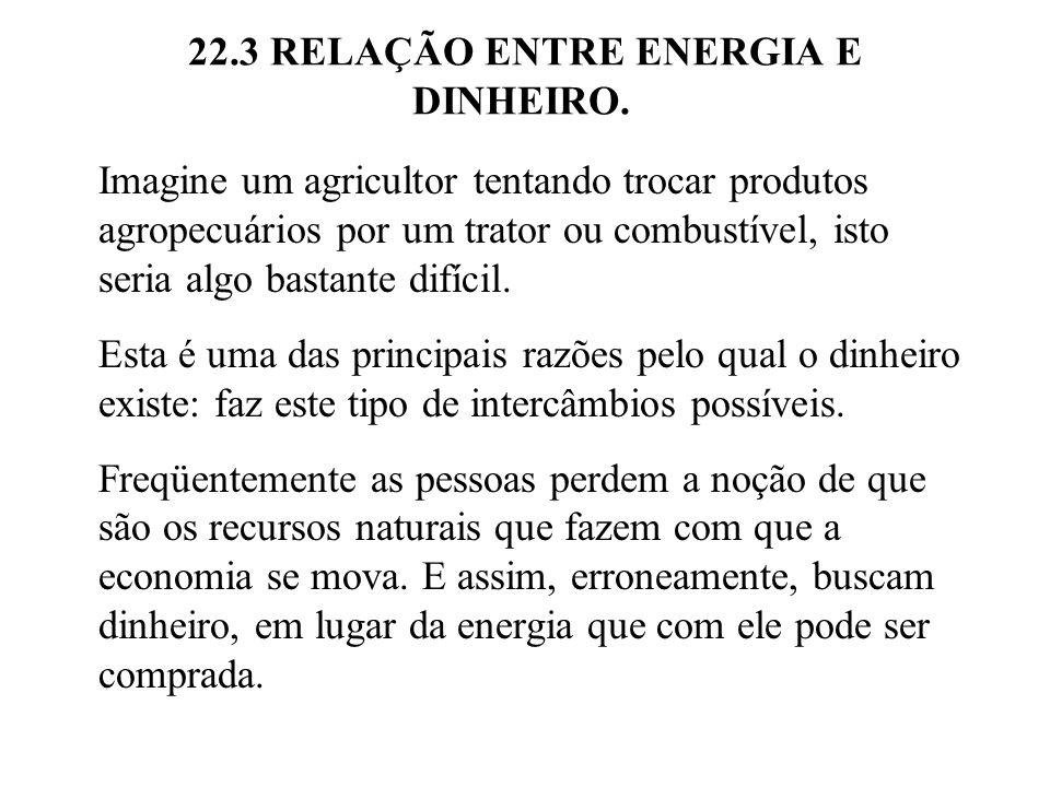 22.3 RELAÇÃO ENTRE ENERGIA E DINHEIRO.Na Figura 22.3 o dinheiro circula entre fazendas e a cidade.