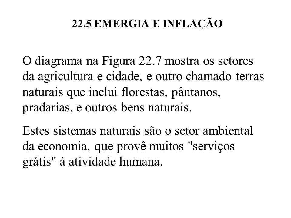 22.5 EMERGIA E INFLAÇÃO A circulação de dinheiro ainda permanece no setor agrícola e urbano, enquanto que nada de dinheiro circula de outros setores ao meio ambiente.