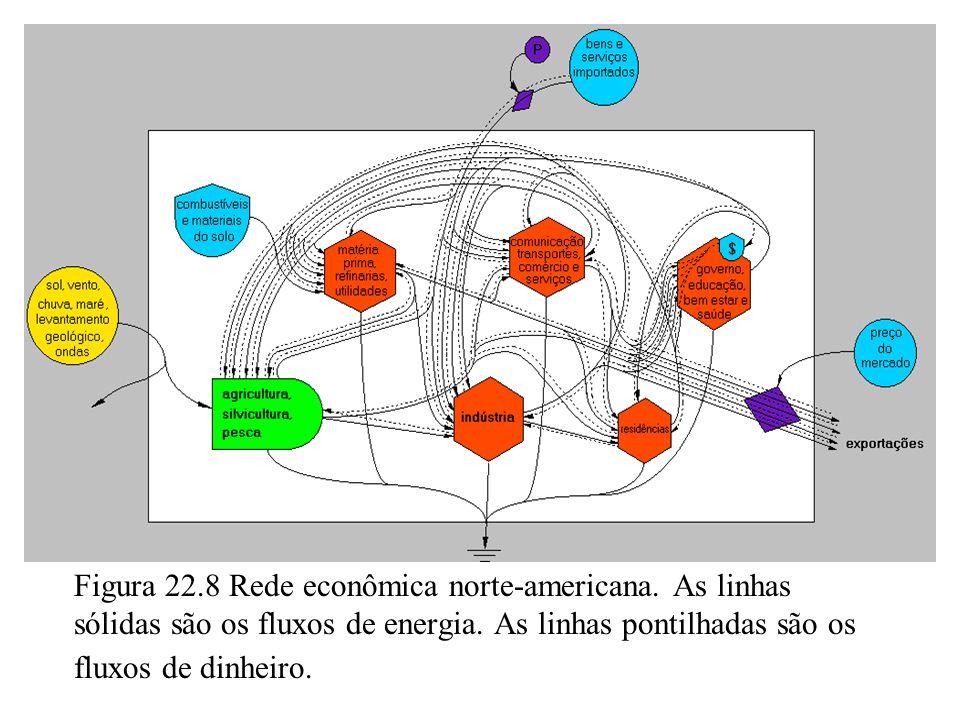 22.7 REDE DA ECONOMIA.O fluxo de dinheiro pelo setor do governo é mais complicado.