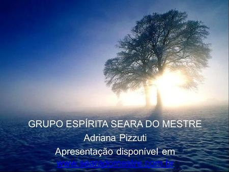 GRUPO ESPÍRITA SEARA DO MESTRE Adriana Pizzuti