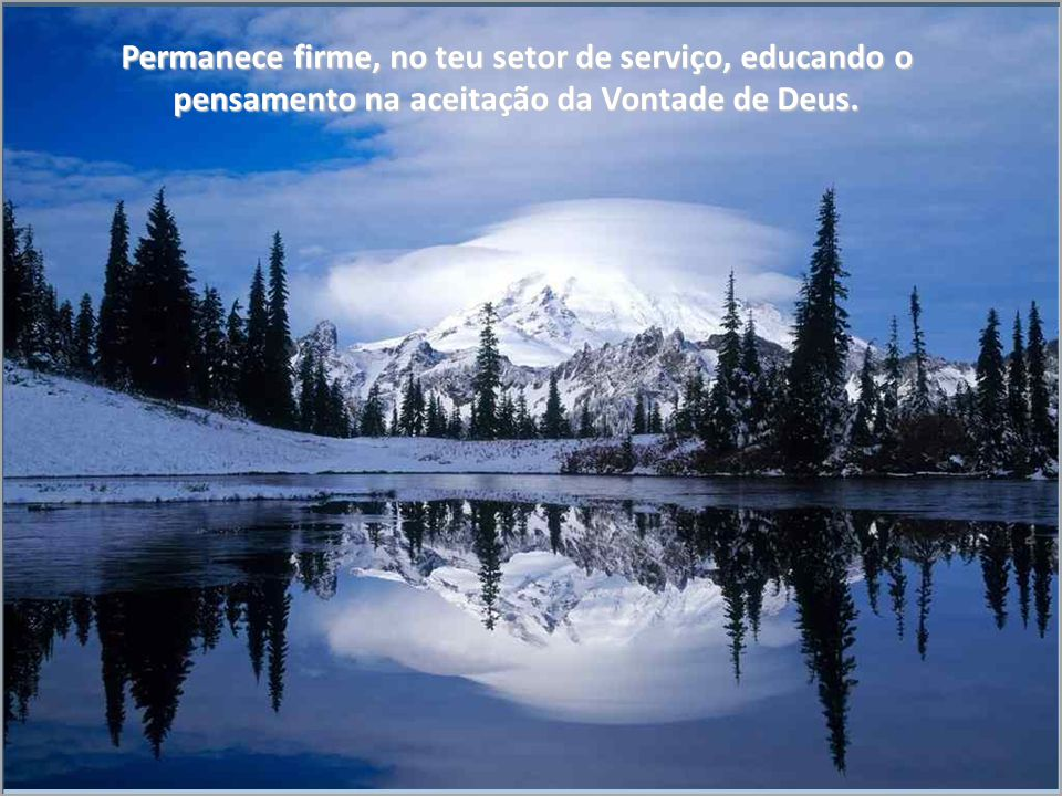 Permanece firme, no teu setor de serviço, educando o pensamento na aceitação da Vontade de Deus.