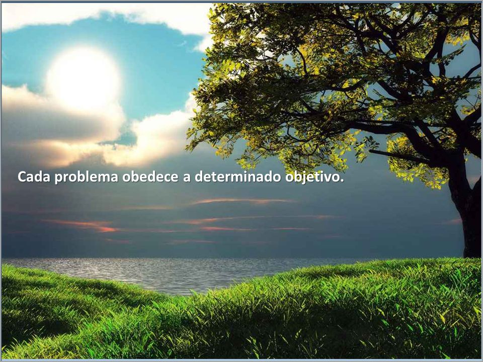 Cada problema obedece a determinado objetivo.