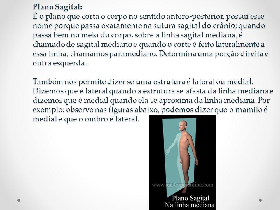 Plano Coronal: É o plano que corta o corpo lateralmente, de uma orelha a outra.