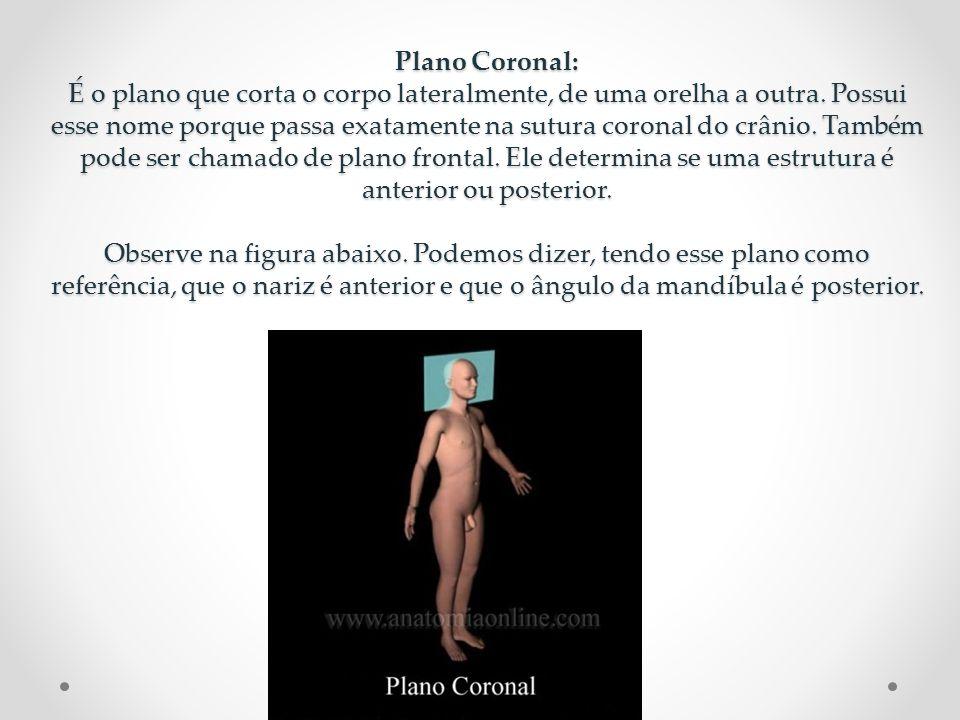 Plano Transversal: É o plano que corta o corpo transversalmente, também é chamado de plano axial.