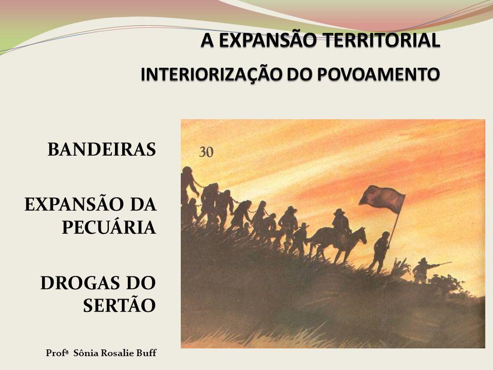 A COLONIZAÇÃO PORTUGUESA NO BRASIL ATÉ SÉC.XVII Como caranguejos, arranhando o litoral...