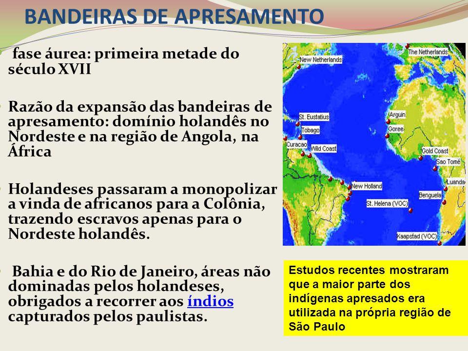 PRINCIPAIS BANDEIRAS DE APRESAMENTO As missões tornaram-se o alvo favorito das bandeiras apresadoras, por abrigarem um grande número de nativos já aculturados.