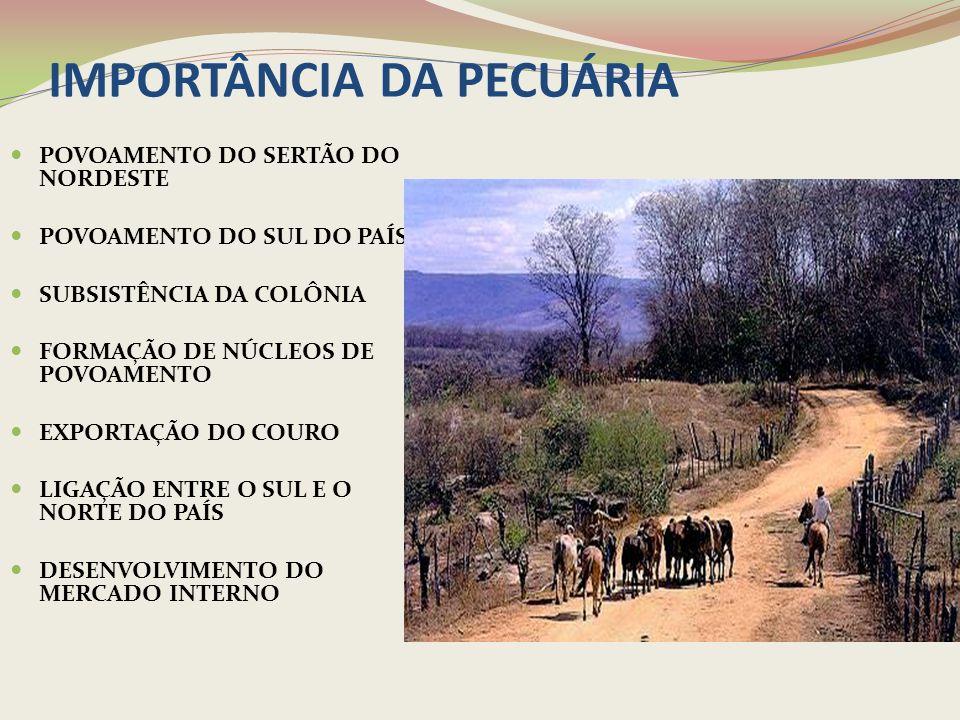 A PECUÁRIA: ATIVIDADE SUBSIDIÁRIA À CANA DE AÇÚCAR Utilidade do gado: alimento, transporte e como força de tração para a moagem da cana.