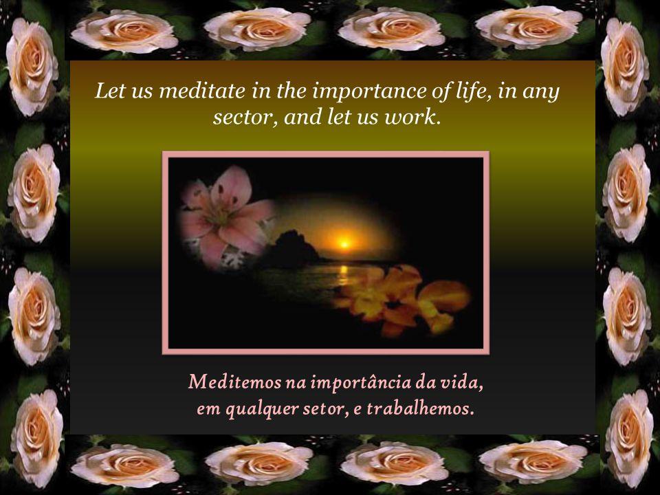 Meditemos na importância da vida, em qualquer setor, e trabalhemos.
