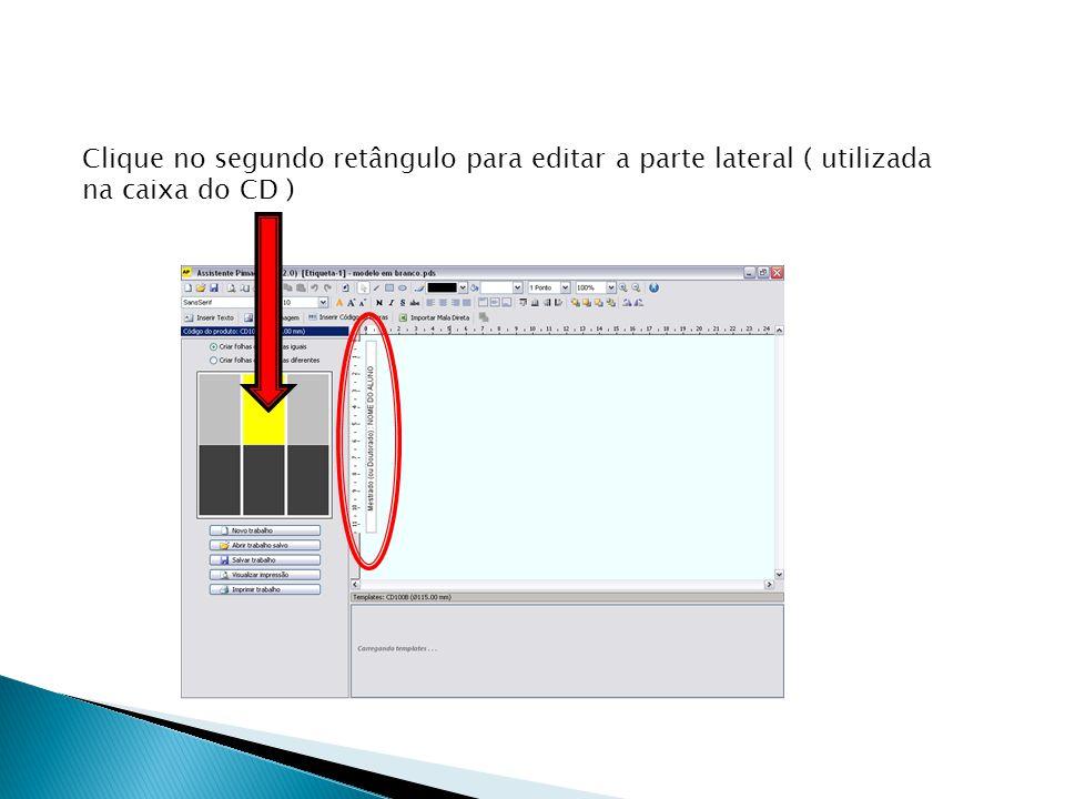 O terceiro retângulo é opcional, serve para escrever alguma descrição com mais detalhes sobre o conteúdo do CD