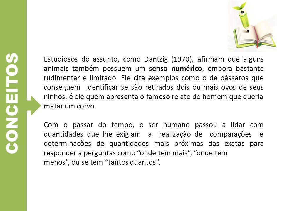 CONCEITOS 2.