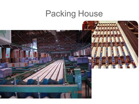Packing House.