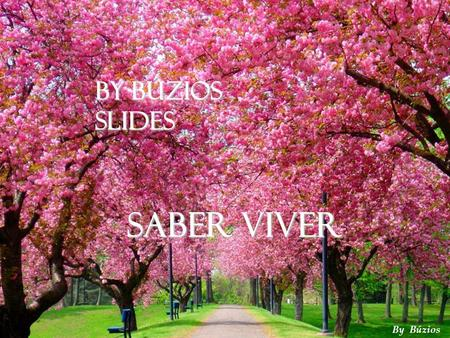 By Búzios Slides Saber Viver By Búzios 1.
