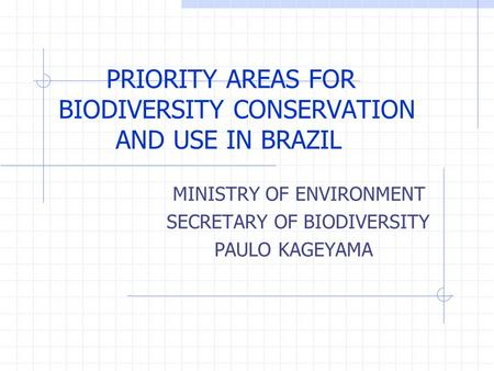 PRIORITY AREAS FOR BIODIVERSITY CONSERVATION AND USE IN BRAZIL MINISTRY OF ENVIRONMENT SECRETARY OF BIODIVERSITY PAULO KAGEYAMA.