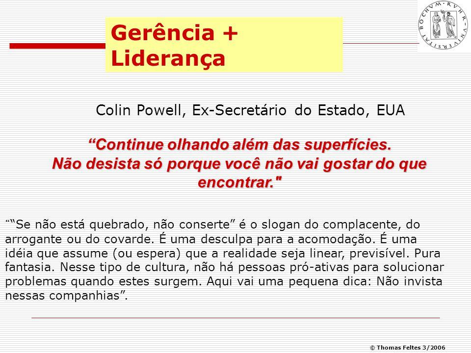 © Thomas Feltes 3/2006 Organização não realiza nada.