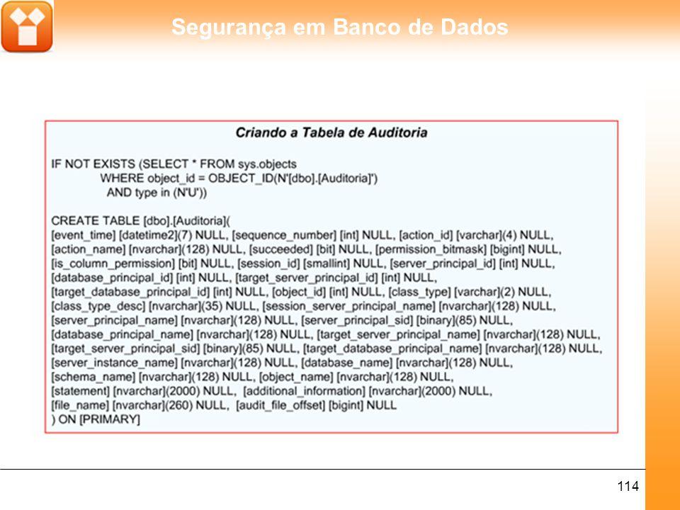 Segurança em Banco de Dados 115