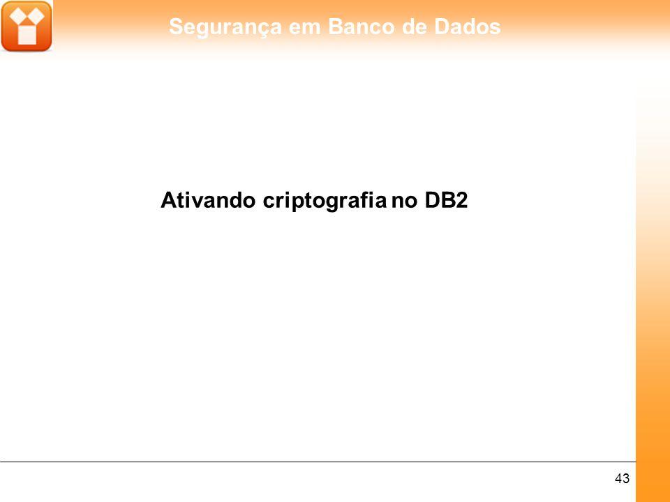 Segurança em Banco de Dados 44 O DB2 possui um parâmetro que permite ao DBA aplicar mais segurança nestes pacotes de informações com a ativação de criptografia.
