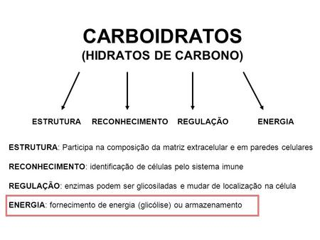 CARBOIDRATOS (HIDRATOS DE CARBONO)
