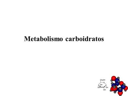 Metabolismo carboidratos