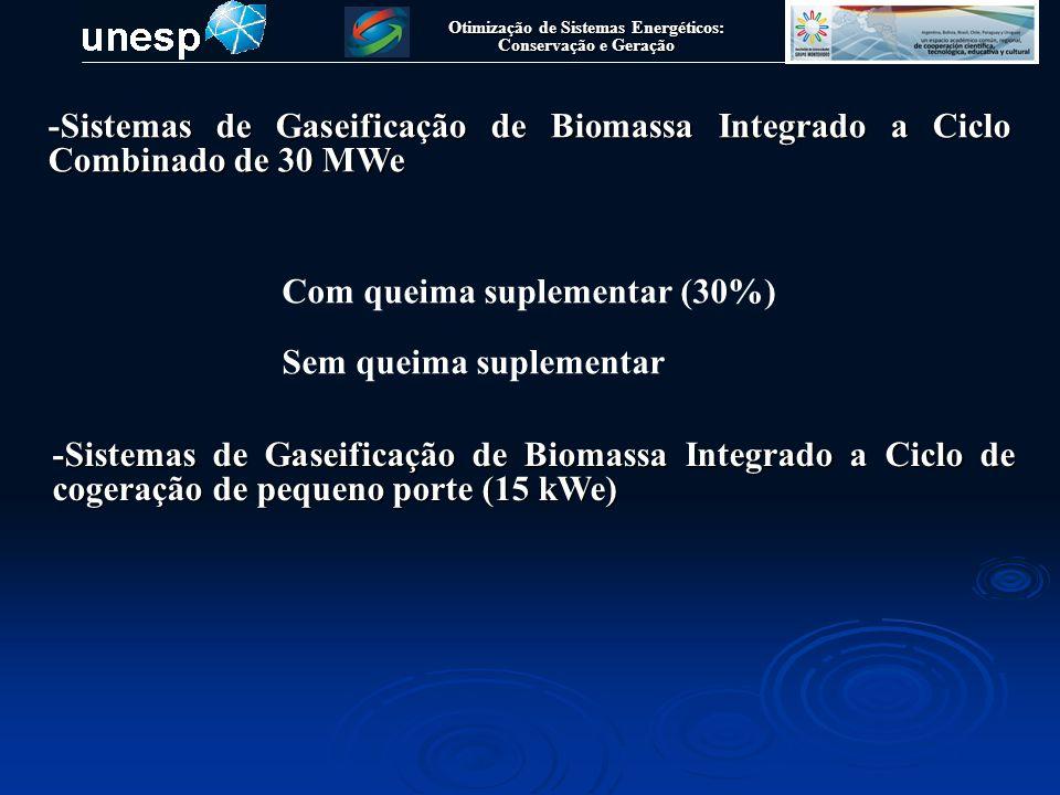 Otimização de Sistemas Energéticos: Conservação e Geração Sistemas de Gaseificação de Biomassa Integrado a Ciclo Combinado de Potencia (BIGCC) de 30 MWe