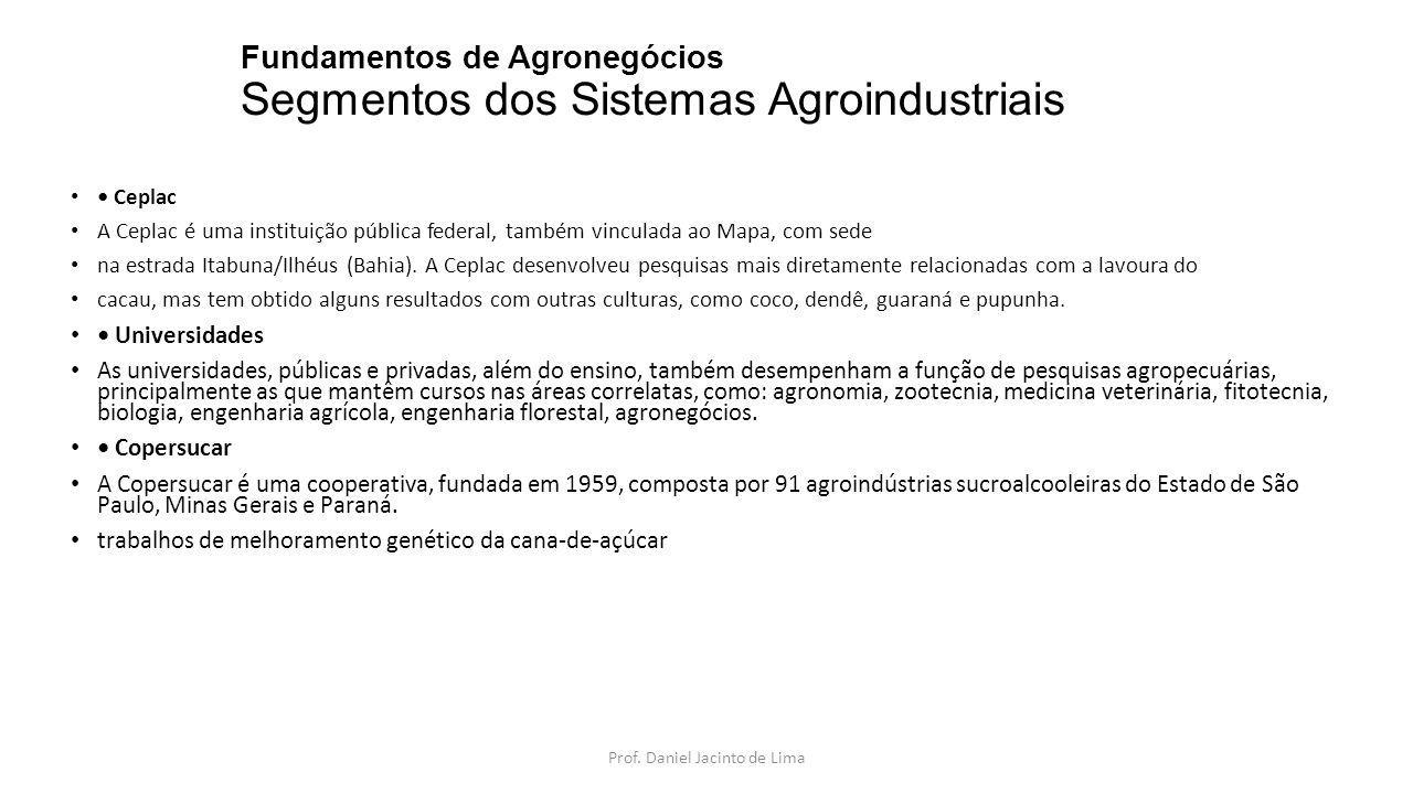 Fundamentos de Agronegócios Segmentos dos Sistemas Agroindustriais B.