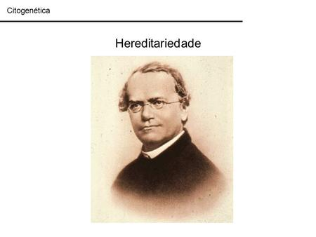 Citogenética Hereditariedade.