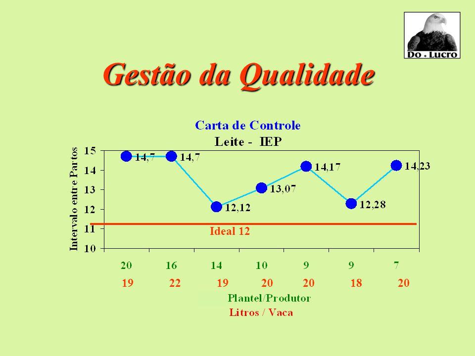 Gestão da Qualidade Gestão da Qualidade 19 22 19 20 20 18 20 Ideal 12