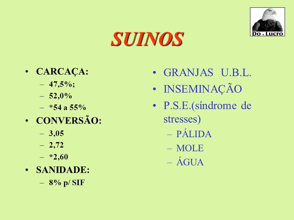 SUINOS CARCAÇA: –47,5%; –52,0% –*54 a 55% CONVERSÃO: –3,05 –2,72 –*2,60 SANIDADE: –8% p/ SIF GRANJAS U.B.L.