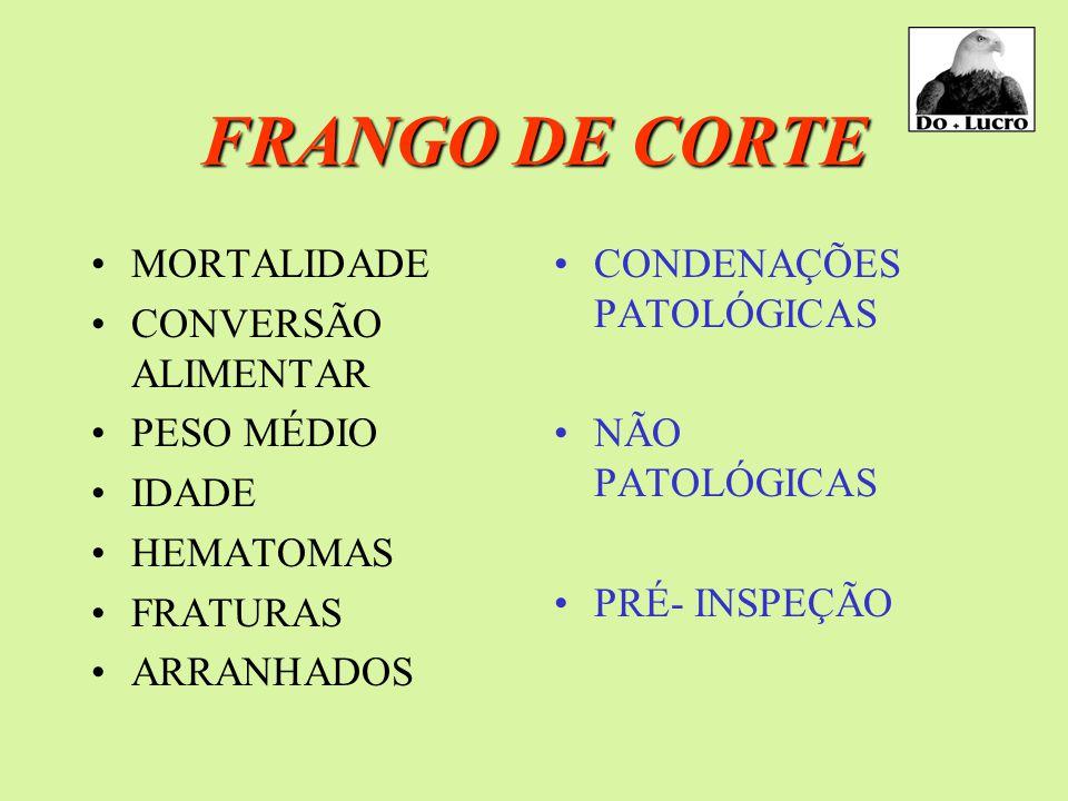 FRANGO DE CORTE MORTALIDADE CONVERSÃO ALIMENTAR PESO MÉDIO IDADE HEMATOMAS FRATURAS ARRANHADOS CONDENAÇÕES PATOLÓGICAS NÃO PATOLÓGICAS PRÉ- INSPEÇÃO