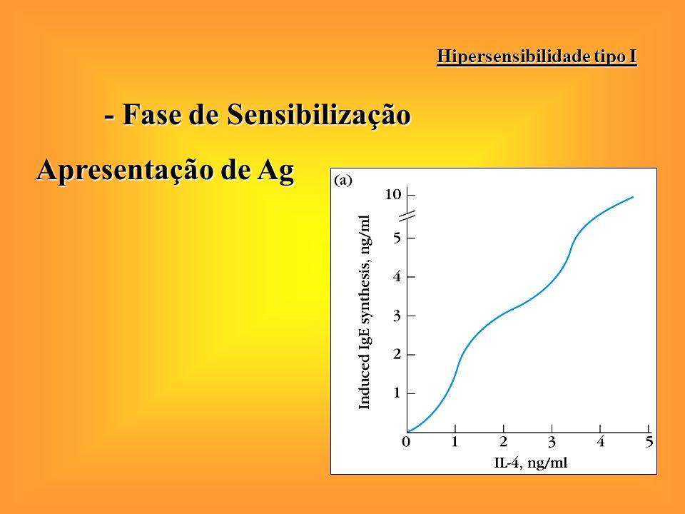 - Fase de Sensibilização Apresentação de Ag Hipersensibilidade tipo I