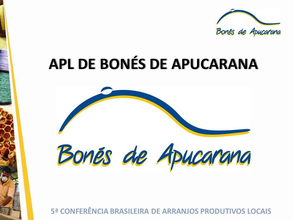 5ª CONFERÊNCIA BRASILEIRA DE ARRANJOS PRODUTIVOS LOCAIS HISTÓRICO DO APL DE BONÉS DE APUCARANA