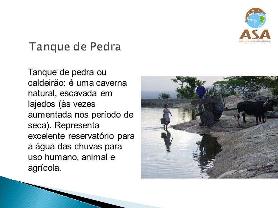 Caxio ou barreiro trincheira: criado para armazenar água para os animais e para irrigação de salvação, para complementar o abastecimento de cultivos anuais.