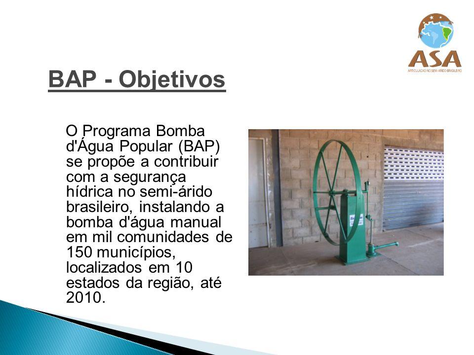 Antônio Gomes Barbosa Coordenador Pedagógico Programa Uma Terra e Duas Águas – P1+2 barbosa@asabrasil.org.br (81) 2121 7666 www.asabrasil.org.br