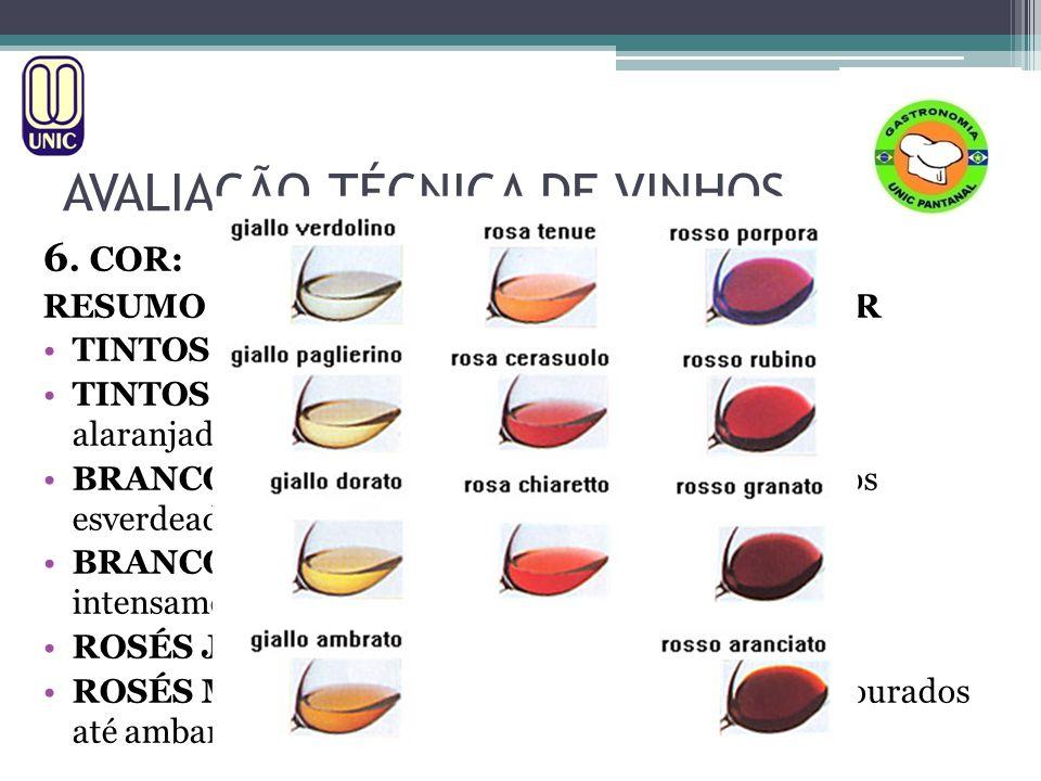 AVALIAÇÃO TÉCNICA DE VINHOS O EXAME OLFATIVO A manifestação sensorial mais encantadora do vinho são seus aromas.