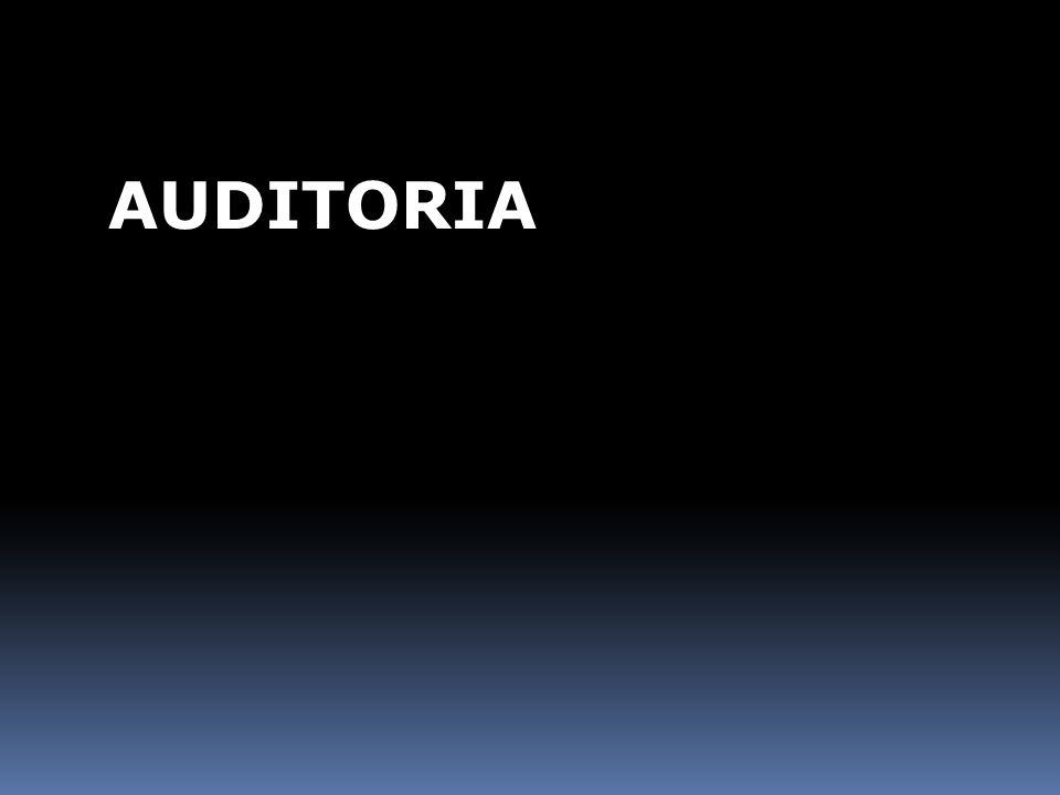 A FINALIDADE DE UMA AUDITORIA É VERIFICAR A CONFORMIDADE DO SISTEMA