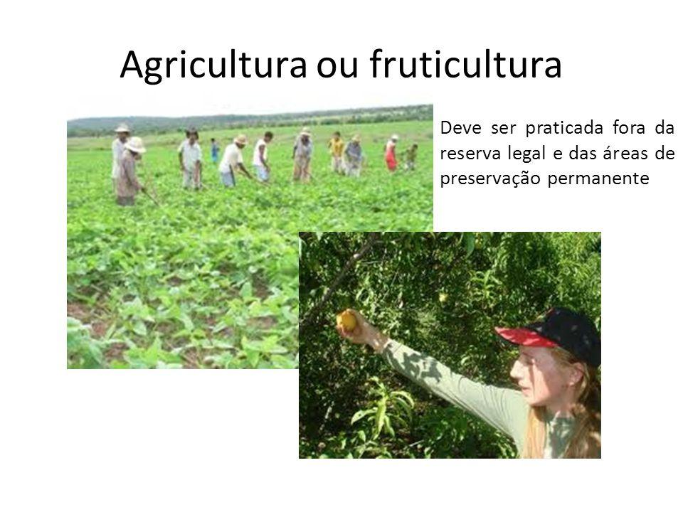 Silvicultura Deve ser implantada for a das áreas de preservação permanente.