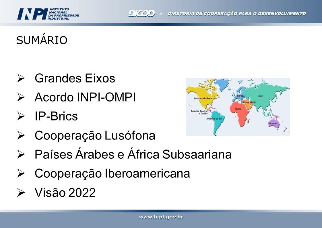GRANDES EIXOS Inserção comercial do Brasil Superação de gargalos intrínsecos ao sistema via cooperação Modernização da imagem do INPI Participação na definição dos rumos do Sistema internacional de PI