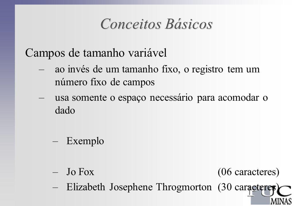 Conceitos Básicos Registros de Formato Variável –diferentes tipos de entidades armazenadas no mesmo arquivo Exemplo: Um empregado temporário e outro permanente na empresa