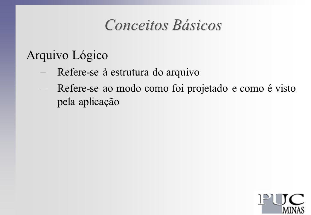Conceitos Básicos Arquivo Físico –Refere-se ao modo como a estrutura lógica é armazenada no meio físico –Quando nos referimos a um arquivo no meio físico, estamos nos referimos a uma seqüência particular de bytes armazenada neste meio