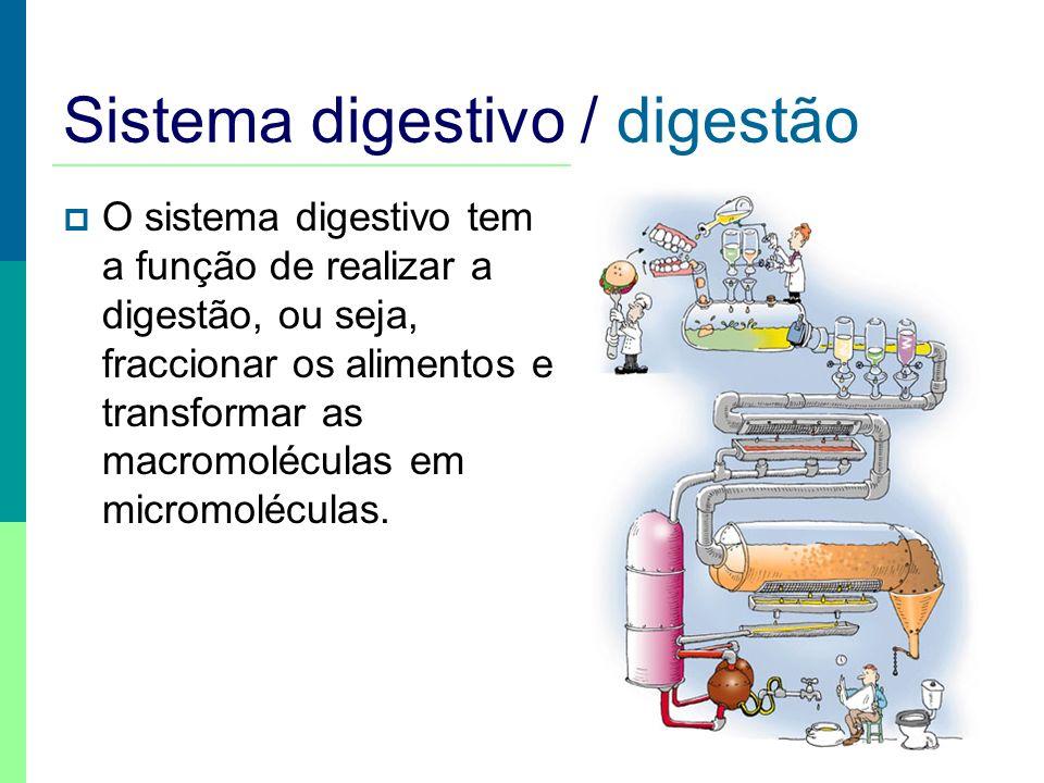 Sistema digestivo Boca Esófago Fígado Vesícula biliar Estômago Pâncreas Intestino delgado Intestino grosso Recto Faringe Glândulas salivares