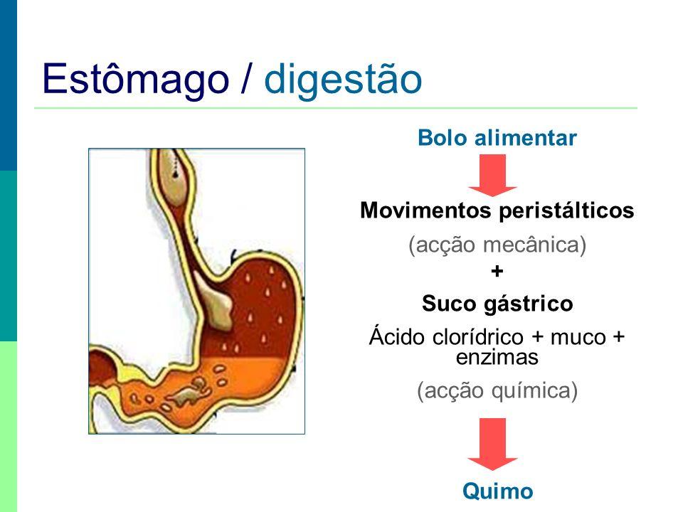 Esófago / refluxo esofágico http://www.manualmerck.net/?url=/artigos/%3Fid%3D127%26cn%3D1081