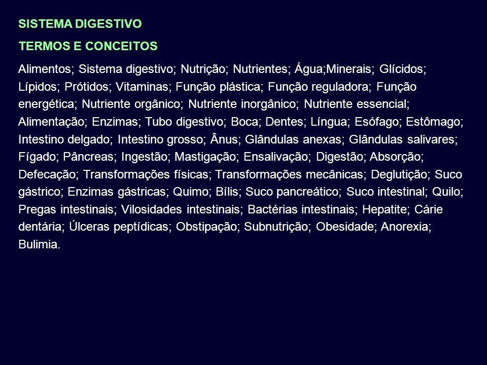 FIM Adaptado de Prof. Óscar Sequeira Prof. Raquel Cerca Prof.Luís Dias